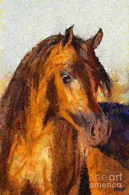 Horse Painting - A Bay Arabian Stallion by Dragica  Micki Fortuna