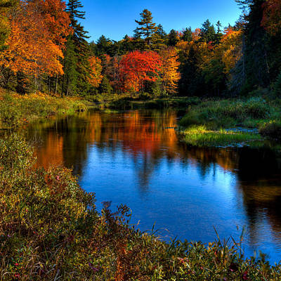 A Beautiful Autumn Day On The Moose River Print by David Patterson