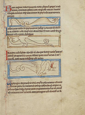 Boa Constrictor Drawing - A Boa,  A Jaculus,  A Siren Unknown England by Litz Collection