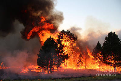 Print featuring the photograph A Burst Of Flames From The White Draw Fire by Bill Gabbert