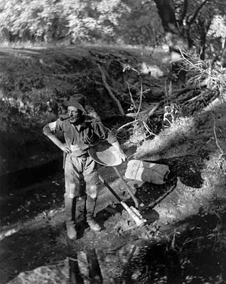 Prospecting Photograph - A California Gold Miner by Underwood Archives