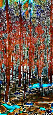 Digital Photograph - A Change In The Seasons IIi by David Patterson