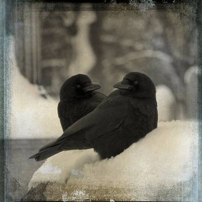 A Crow Couple Print by Gothicolors Donna Snyder
