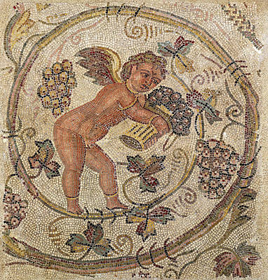 A Cupid Picking Grapes, Fragment Of Pavement From Carthage, Tunisia Mosaic Print by Roman School