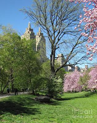 Cherry Blossoms Photograph - A Day In Central Park by Maude Renganeschi