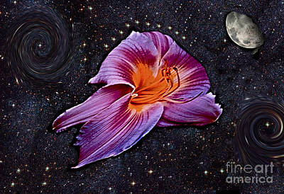 A Daylily Bloom Rockets To The Moon Print by ImagesAsArt Photos And Graphics