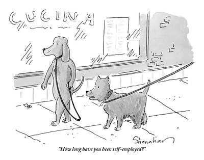 A Dog Being Walked On A Leash Asks A Dog Who Print by Danny Shanahan