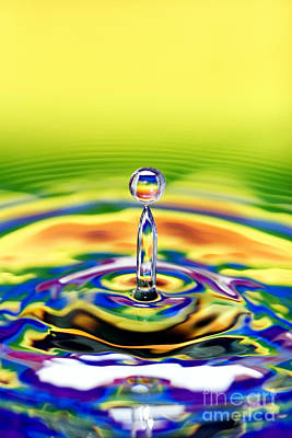Fluid Photograph - A Drop Of Colour by Tim Gainey