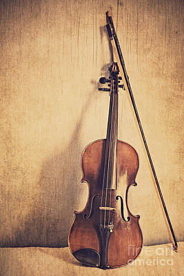 Violin Bows Violin Bows Photograph - A Fiddle by Emily Kay