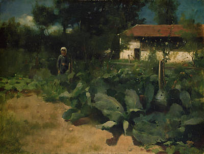 Cabbage Painting - A French Kitchen Garden, 1883 by Edward Stott
