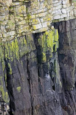 Of Lichen Photograph - A Geological Unconformity by Ashley Cooper
