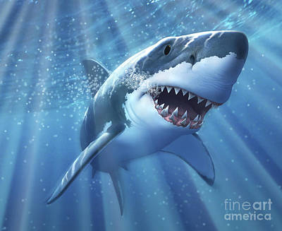 A Great White Shark With Sunrays Print by Jerry LoFaro