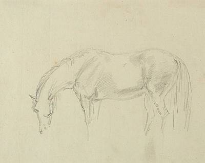 Horse Drawing - A Horse Grazing  by Sawrey Gilpin
