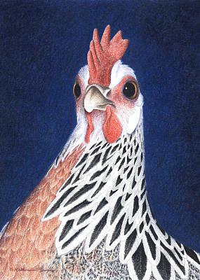 Phoenix Drawing - A Little Arrogant by Katherine Plumer