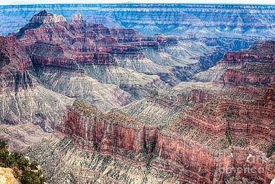 Awesome Photograph - A Look Into The Grand Canyon  by James BO  Insogna