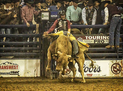 Bull Riders Photograph - A Lot Of Bull At The National Stock Show by Priscilla Burgers