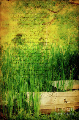 Canoe Digital Art - A Love Letter From Summer by Lois Bryan