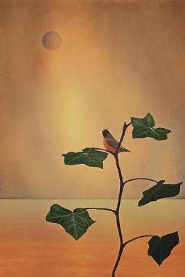 A Moment Of Zen Print by Tom York Images