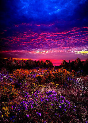 A Moment Print by Phil Koch