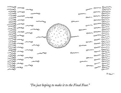 Ncaa Basketball Drawing - A Number Of Sperms Approach An Egg In The Shape by Michael Shaw