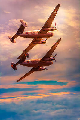 Airliners Digital Art - A Pair Of Flamingos by Chris Lord