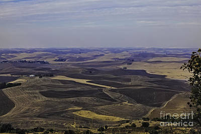 A Palouse State Of Mind Print by Nancy Marie Ricketts