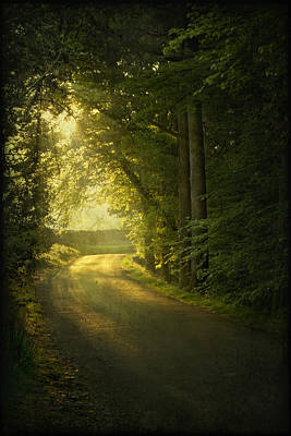 A Path To The Light Print by Evelina Kremsdorf