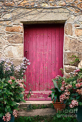 French Door Photograph - A Pink Door by Olivier Le Queinec