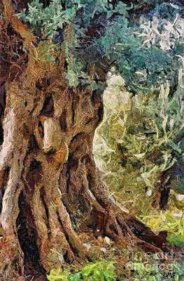 Poster Painting - A Really Old Olive Tree by Dragica  Micki Fortuna