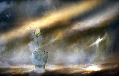 A Rose On The Plain Print by Georgiana Romanovna