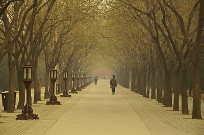 Parks Photograph - A Royal Stroll by Aaron S Bedell