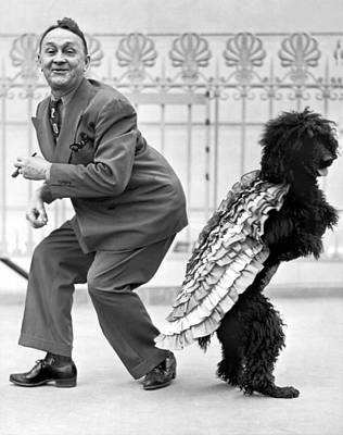 Unusual Animal Photograph - A Samba Stepping Black Poodle by Underwood Archives