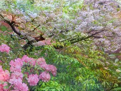 Photograph - A Scented Softness by Shirley Sirois