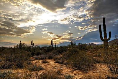 A Sonoran Desert Sunset  Print by Saija  Lehtonen