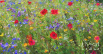Friendly Digital Art - A Splash Of Summer Colour by Tim Gainey