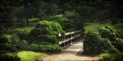 Outside Photograph - A Stroll Through The Park by Tom Mc Nemar