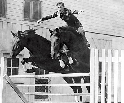 A Stunt Rider On Two Horses. Print by Underwood Archives