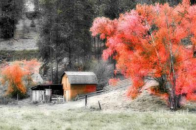 Fading Dream Photograph - A Subtle Autumn by Tara Turner