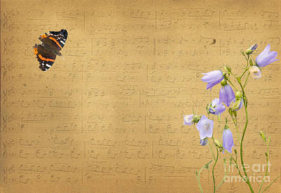 Bluebells Photograph - A Summer Melody by Gry Thunes