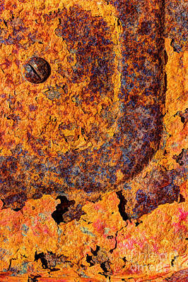 A Tad Rusty Print by Heidi Smith