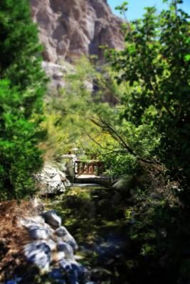 Whitewater Photograph - A Teeny Tiny Bridge by Laurie Search