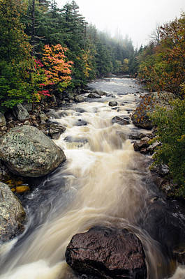 A Touch Of Fall Print by Mark Papke