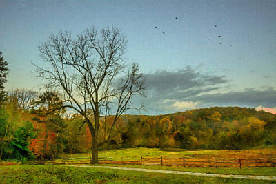 A Tree At Valley Forge Print by Photos By Jeff