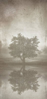 Single Digital Art - A Tree In The Fog 3 by Scott Norris