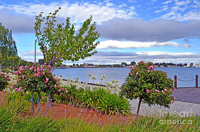 Japanese Chin Photograph - A View Of Congressman Leo Ryan Memorial Park In Foster City by Jim Fitzpatrick