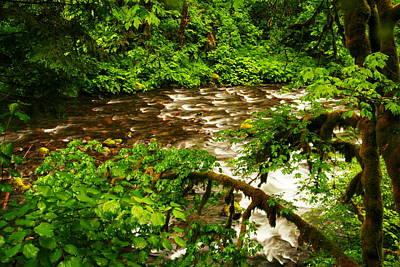 A View Of Eagle Creek Print by Jeff Swan