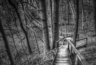 Boardwalk Photograph - A Walk Through The Woods by Scott Norris