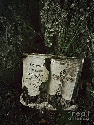 Afterlife Photograph - Abandoned Old Bible In A Cemetery by Amy Cicconi