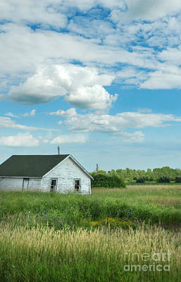 Abandoned Shack In The Country Print by Jill Battaglia