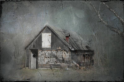 Abandoned Shack On Sugar Island Michigan Print by Evie Carrier